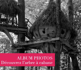 9-album