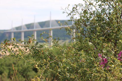Viaduc de Millau - France - ©misteremma.com